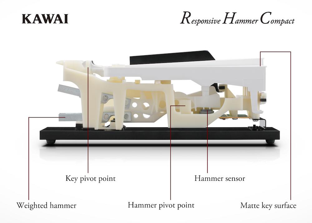 Lo spaccato della meccanica Responsive Hammer Compact