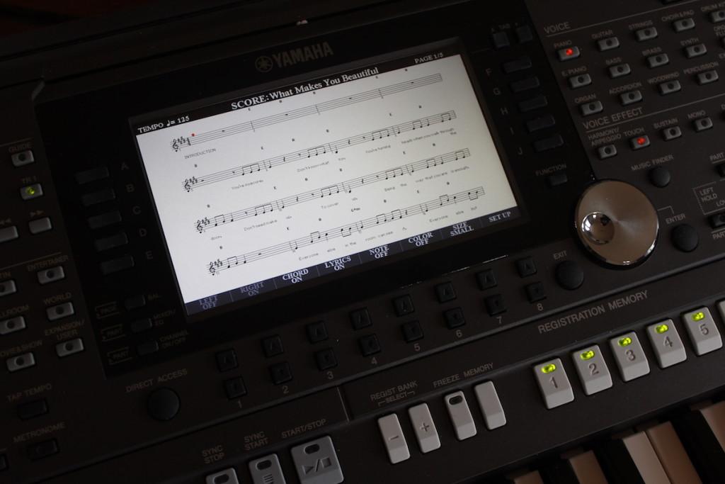 Particolare dello schermo LCD al centro dell'arranger