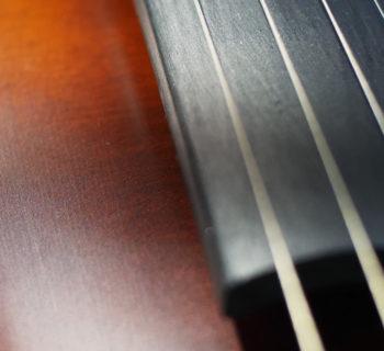 archi virtuale strings