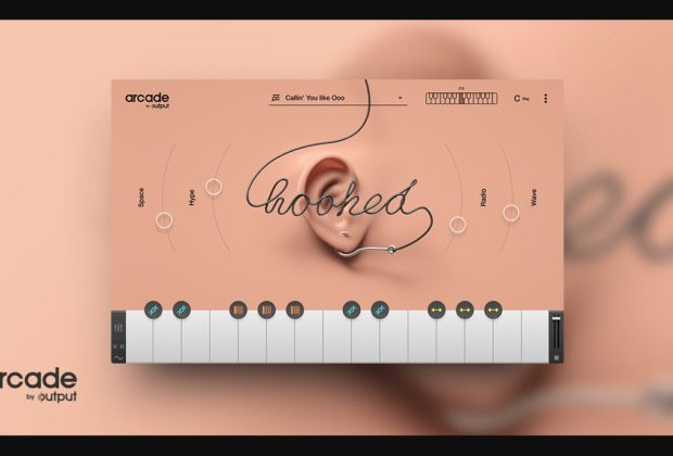 Output Arcade Hooked virtual instrument vox