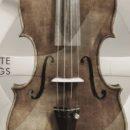 Steinberg Zilhouette Strings cinematique instruments software virtual halion daw strumenti musicali