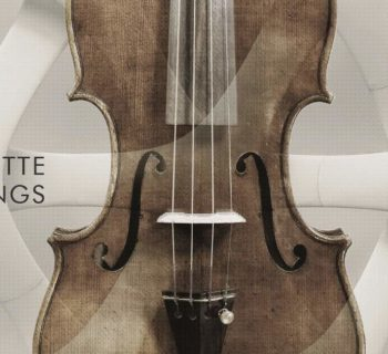 Steinberg Zilhouette Strings cinematique instruments software virtual halion daw strumenti musicali