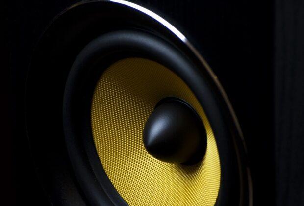 Speaker monitor