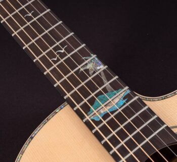 Washburn Midiware chitarra elettrica guitar acustica strumentimusicali